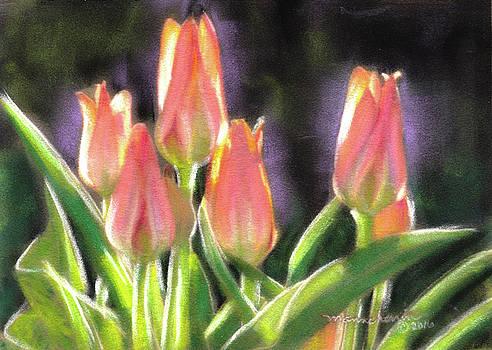 The Queen's Tulips by Melissa Herrin