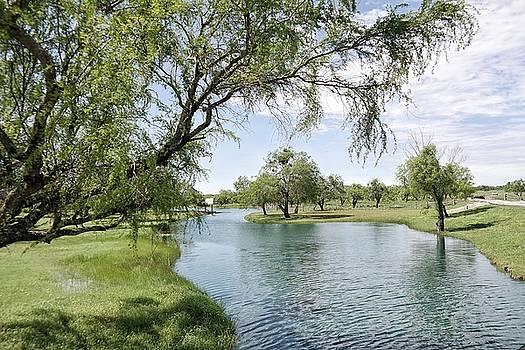 The Ranch at San Patricio II by  Renee McDaniel