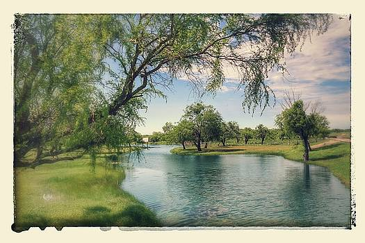The Ranch at San Patricio  by  Renee McDaniel