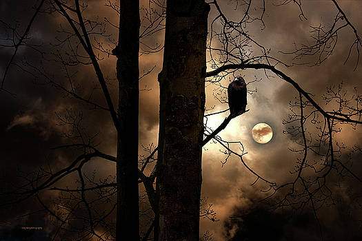The Raven by Ron Jones