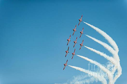 The RCAF Snowbirds by Wayne Wilton