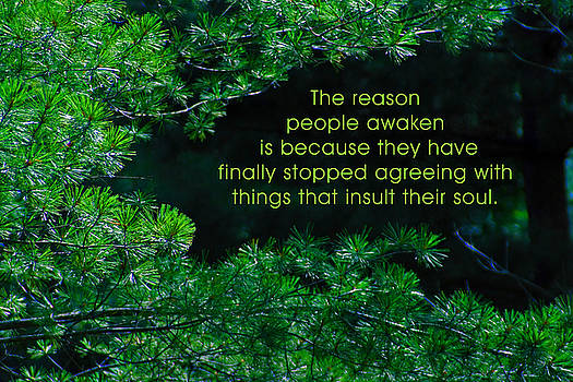 The Reason People Awaken by Mike Flynn