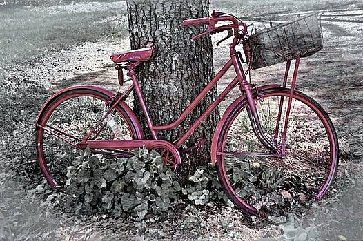 The Red Bicycle by Suzanne Stout