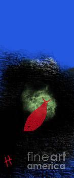 The Red Fish by Hayrettin Karaerkek