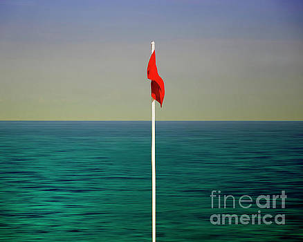 The Red Flag by Edmund Nagele