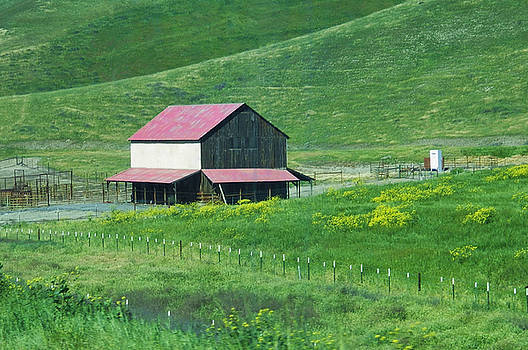 The Red Roof Barn on Route 46 by Jan Moore