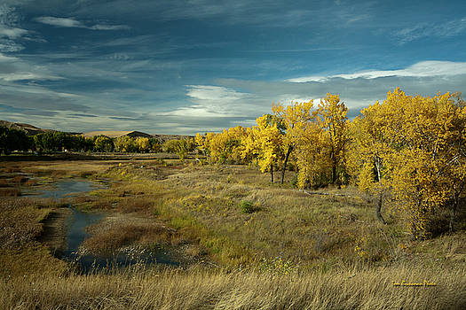 The River Bottom by Tom Buchanan