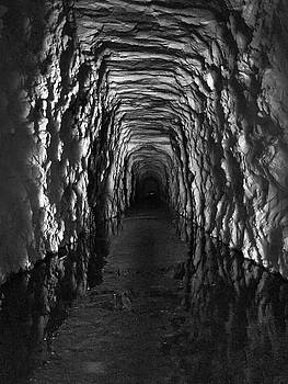 The River in Stumphouse Tunnel in Black and White by Kelly Hazel