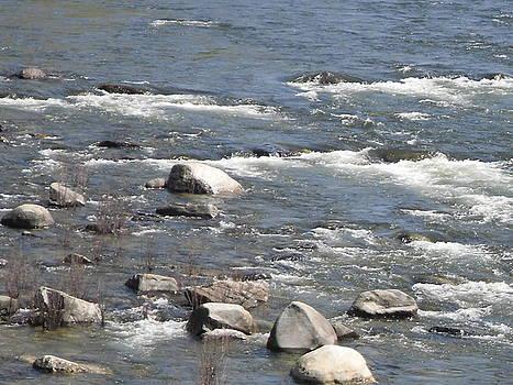 The River Wild by Susanne Awbrey