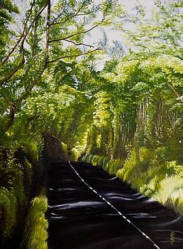 The road through Glenastar by Pauline Sharp