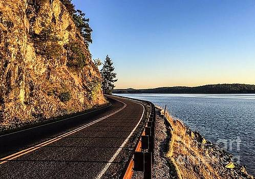 The Road to Orcas Island by William Wyckoff