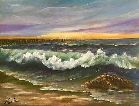 The Rolling Surf by Anne Barberi