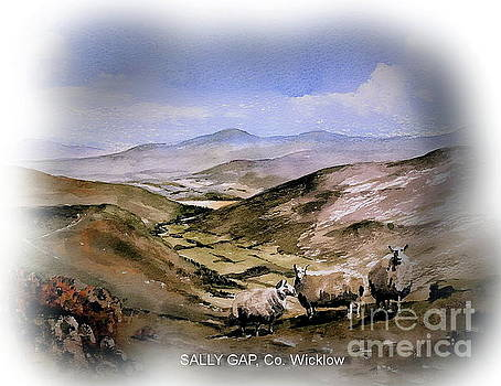 THE SALLY GAP Co. Wicklow by Val Byrne