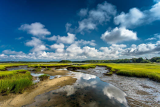 The Salt Marshes, Wellfleet MA by Dapixara Art