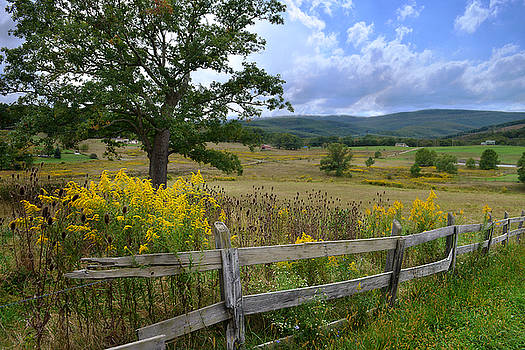 The Scenic Drive by Lj Lambert