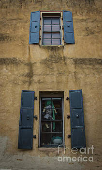 The Shutters by Mitch Shindelbower