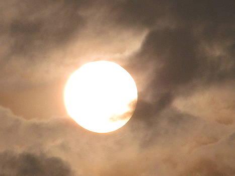 The Shy Sun by Jaiteg Singh