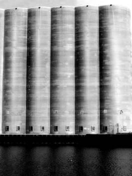 Gothicolors Donna Snyder - The Silos