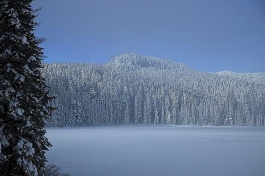 The sound of winter silence by Lynn Hopwood