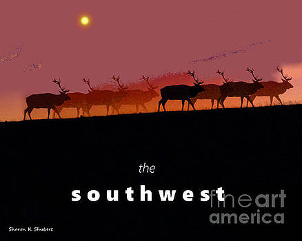 The Southwest by Sharon K Shubert