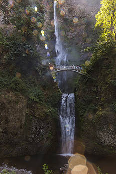 Angela A Stanton - The Sparkles of Multnomah Falls in Oregon