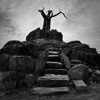 The Stone Steps II BW by David Gordon