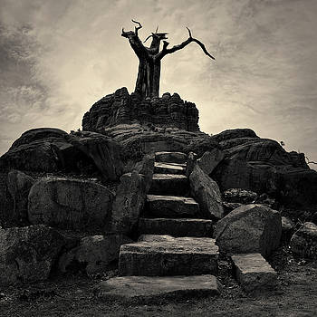 David Gordon - The Stone Steps II Toned