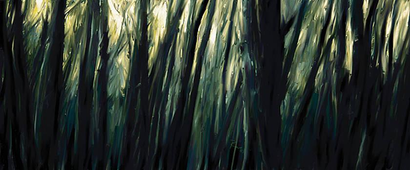 The Sundarbans, 2009 by Rabi Khan