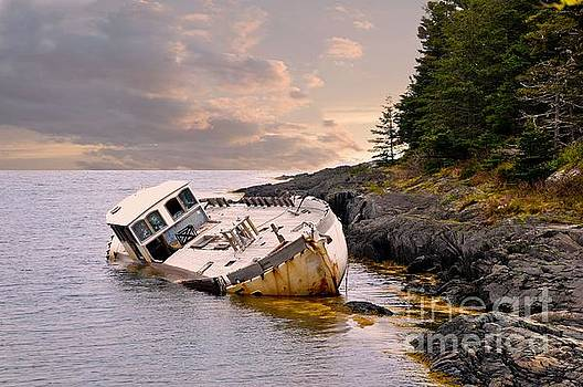 Shipwrecked by Elaine Manley