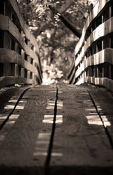 The Suspended Footbridge by Robert Meanor