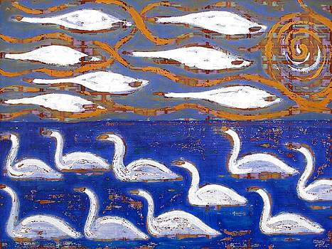 The Swans by Patrick J Murphy