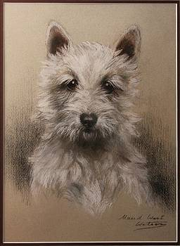 The Terrier by Allen Beilschmidt