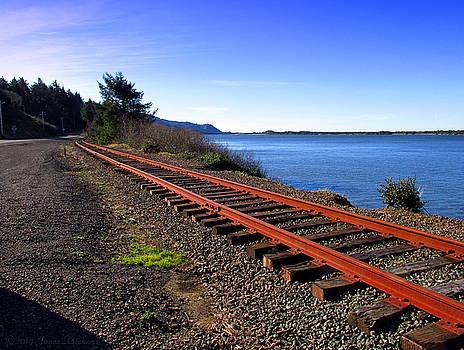 Joyce Dickens - The Tracks Down 101