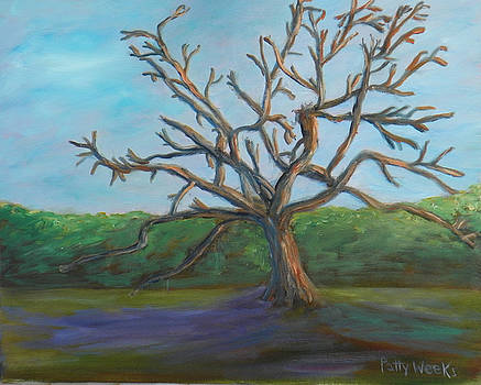 The Tree by Patty Weeks