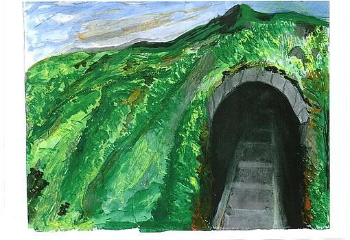 The Tunnel by Sanjay Sonawani