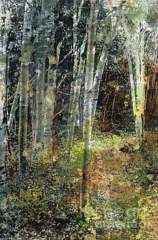 The Underbrush by Frances Marino