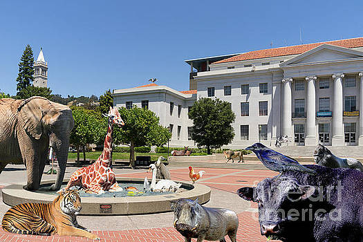 Wingsdomain Art and Photography - The University of California Berkeley Welcomes You To THE ZOO Please Do Not Feed The Animals DSC4086