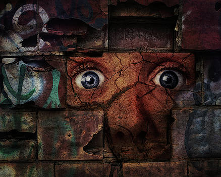 The Wall by Terry Fleckney
