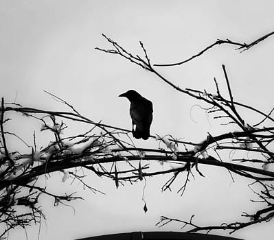 The Watchman by Vail Joy