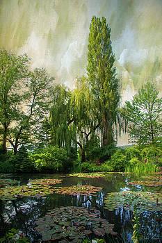 The Water Garden by John Rivera