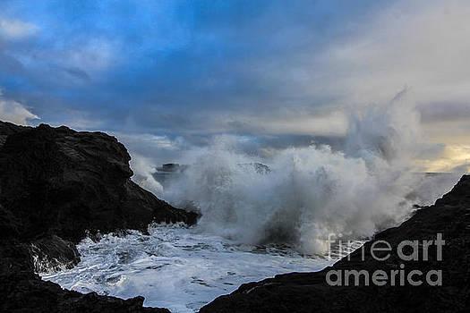 The Wave by Jennifer Ansier