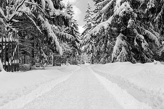 The Way Into The Winter - Monochrome Version by Andreas Levi