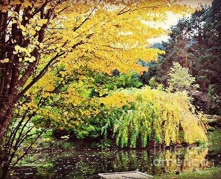 The Wayfarer Pond by Mindy Bench