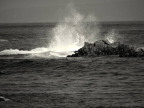 Joyce Dickens - The Wild Pacific In Black And White Two