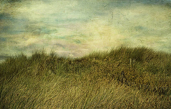 The Wind And The Sea by Claudia Moeckel