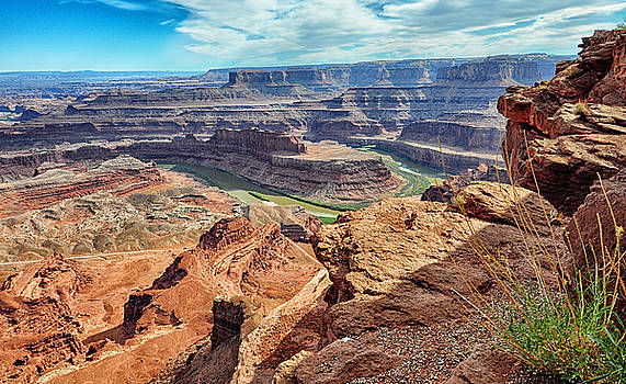 The Winding Colorado River - Dead Horse Point State Park - Utah by Bruce Friedman