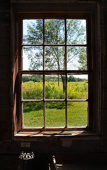 The Window  1 by Joanne Coyle