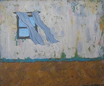 The Window by Carl Stevens