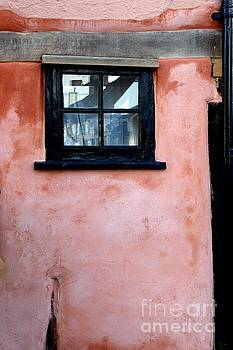 The window by Gary Bridger