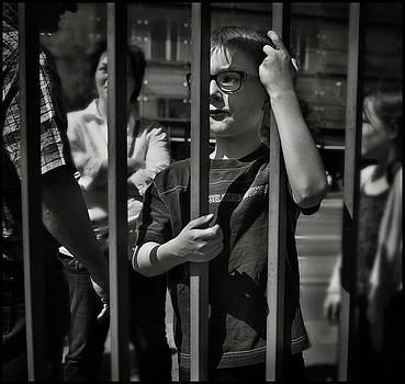 The Witness by Michel Verhoef